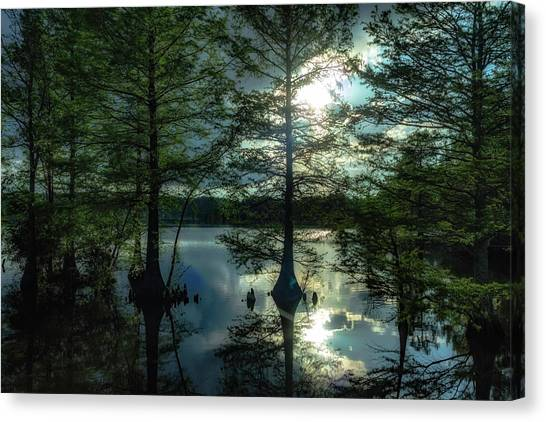 Stumpy Lake Canvas Print