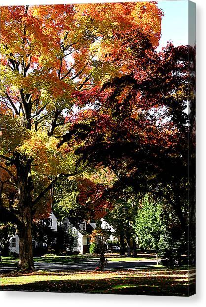 Suburban Autumn Canvas Print by Susan Savad
