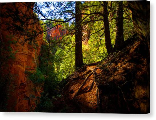 Red Rock Canvas Print - Subway Forest by Chad Dutson