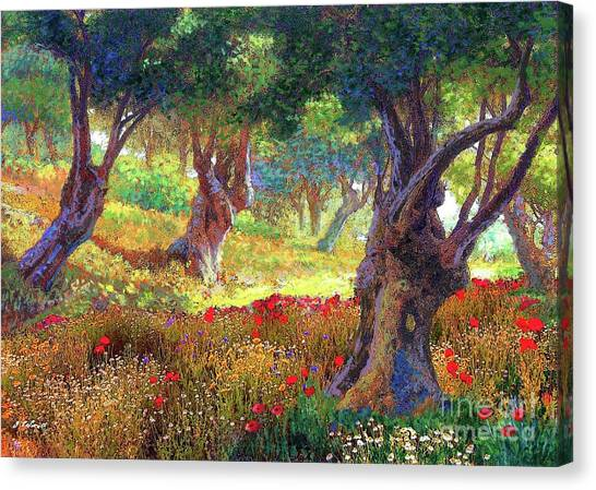 California Landscape Art Canvas Print - Tranquil Grove Of Poppies And Olive Trees by Jane Small