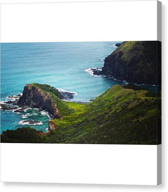 Kiwis Canvas Print - Such A Mystic Place: For Māori, Cape by Peter Traveling