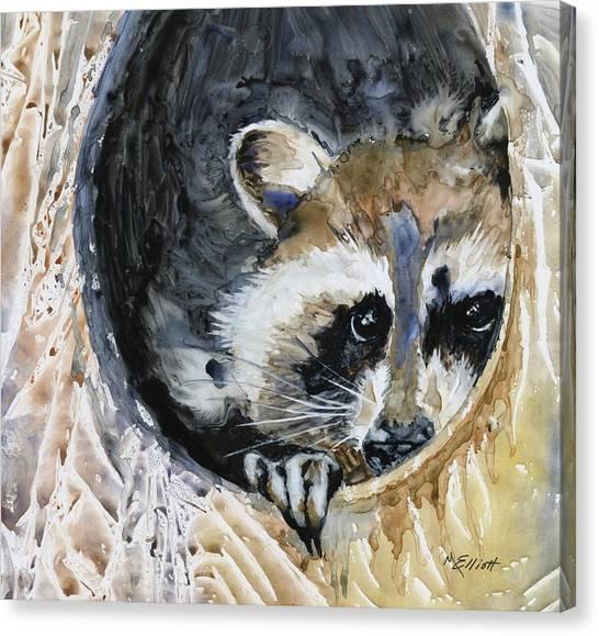 Raccoons Canvas Print - Such A Rascal by Marsha Elliott