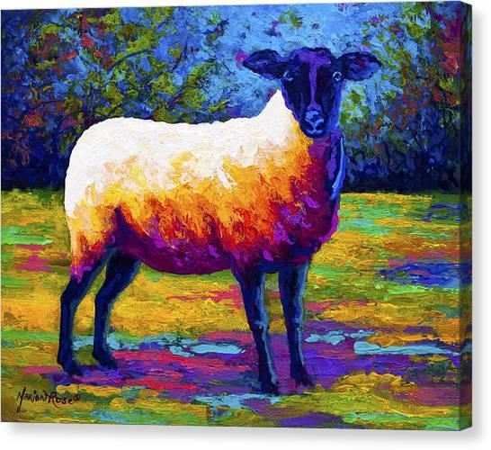 Farm Animals Canvas Print - Suffolk Ewe 2 by Marion Rose