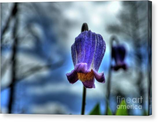 Sugarbowl Leather Flower Canvas Print