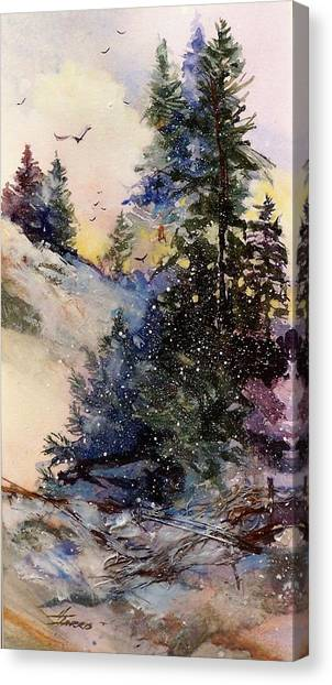 Sugarpines Canvas Print