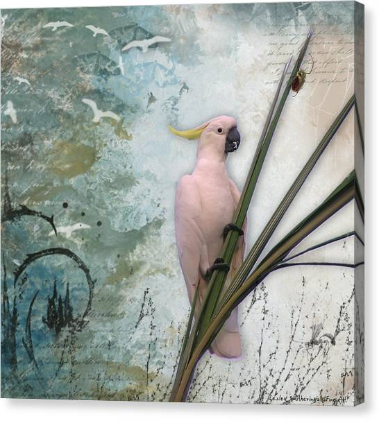 Cockatoos Canvas Print - Sulphur-crested Cockatoo And Beetle by Lesley Smitheringale
