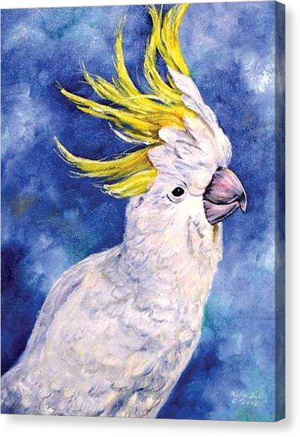 Sulphur-crested Cockatoo Canvas Print