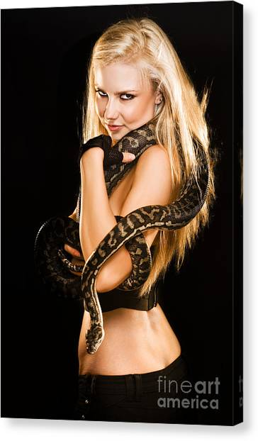 Pythons Canvas Print - Sultry Sedutive Snake Dancer by Jorgo Photography - Wall Art Gallery