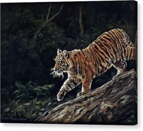 Sumatran Cub Canvas Print