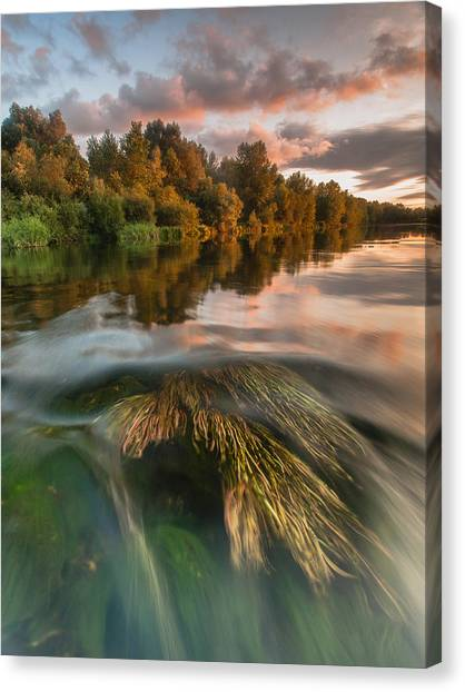 Reflections Canvas Print - Summer Afternoon by Davorin Mance