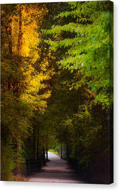 Summer And Fall Collide Canvas Print