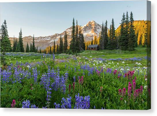Summer Beauty At Indian Henry's Hunting Ground Canvas Print