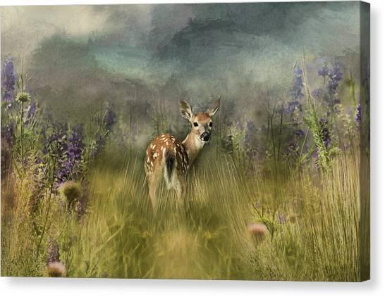 Summer Beauty Canvas Print