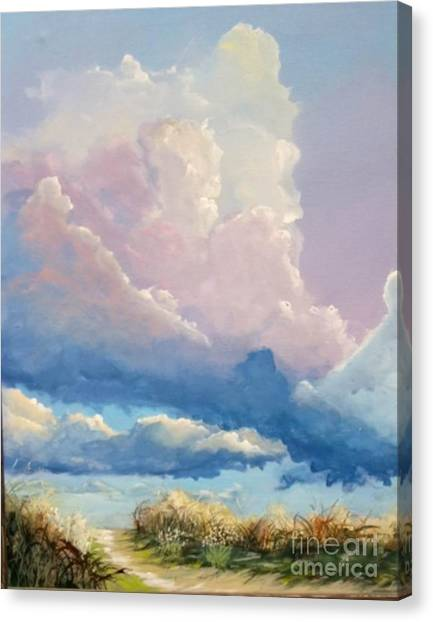 Summer Clouds Canvas Print by John Wise
