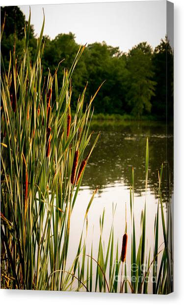 Summer Evening On The Pond Canvas Print by Jim Raines