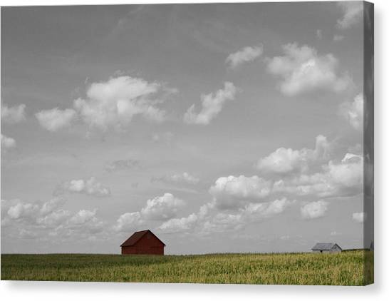 Canvas Print featuring the photograph Summer Fields II by Dylan Punke