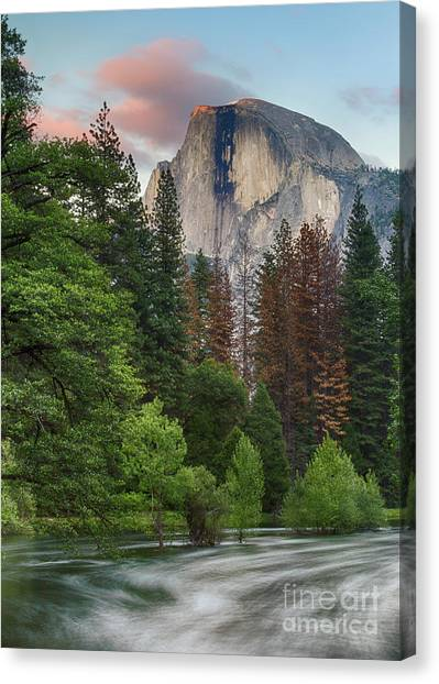 Summer Half Dome  Canvas Print