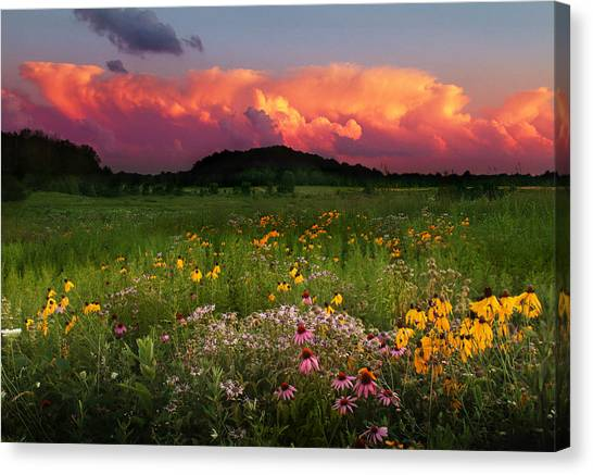 Summer Majesty Canvas Print