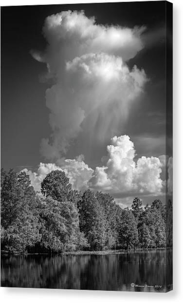 Treeline Canvas Print - Summer Pop Up by Marvin Spates