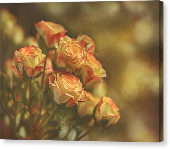 Summer Roses #2 Canvas Print