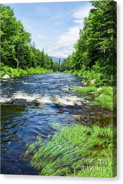 Summer Scene Rangeley Maine  -70742 Canvas Print