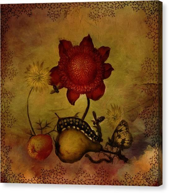 Caterpillers Canvas Print - Summer Still Life by Terry Fleckney