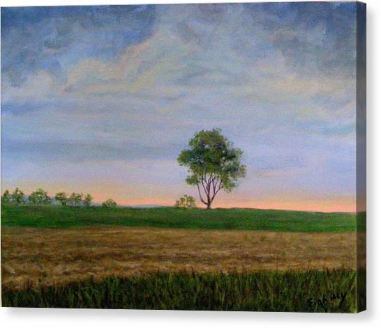Summer Storm Canvas Print by Evelynn Eighmey