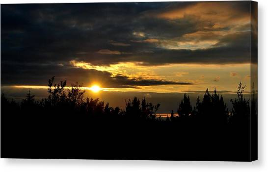 Summer Sunset Canvas Print by Marilynne Bull