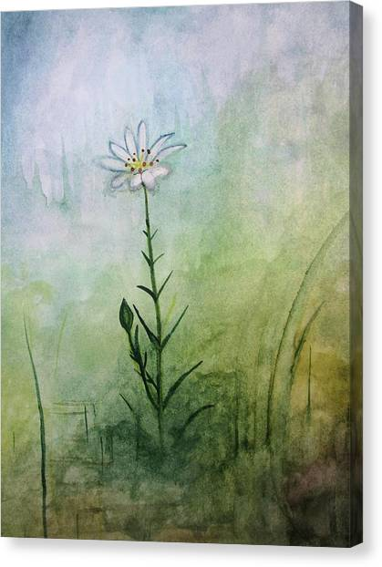 Summer Wildflower Canvas Print