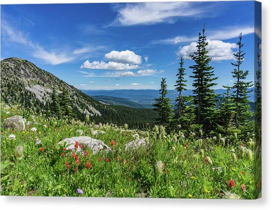 Summer Wildflowers On Big White Canvas Print