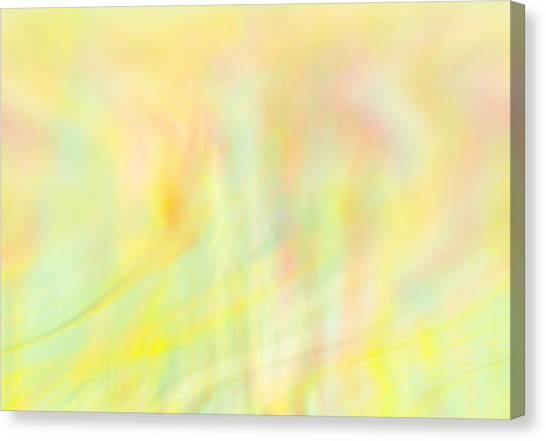 Summer Wind Canvas Print by Eileen Shahbazian