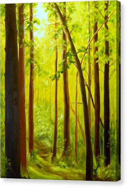 Summer Woods Canvas Print