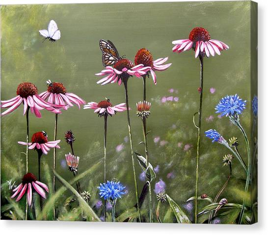 Summerlands Canvas Print