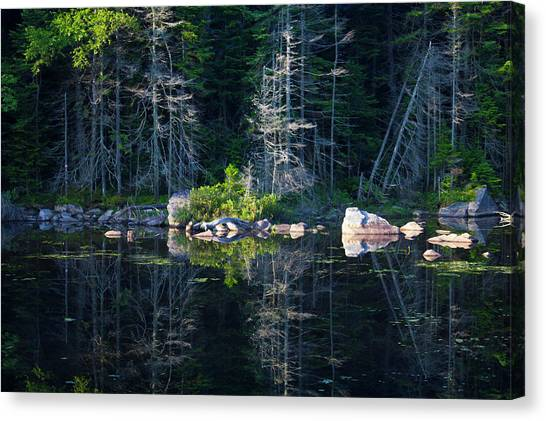 Summertime Reflections On The Lake Canvas Print