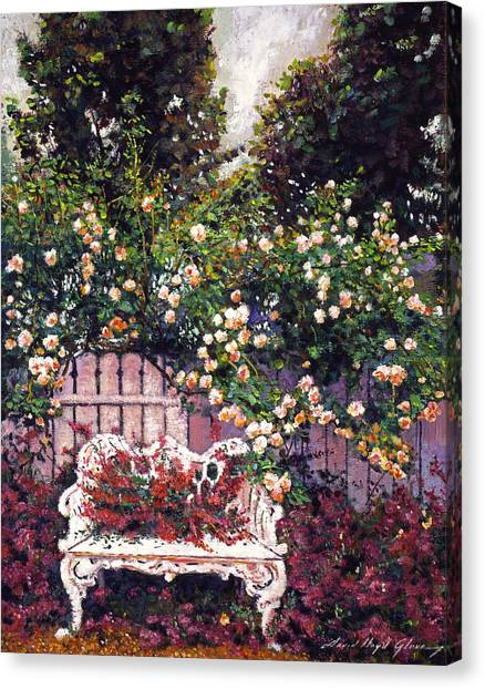 Benches Canvas Print - Sumptous Cascading Roses by David Lloyd Glover