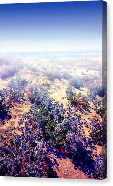 Sun And Wind Canvas Print