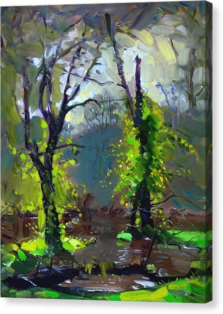 Sun Canvas Print - Sun Ater Rain by Ylli Haruni