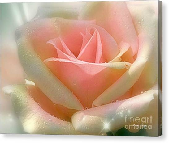 Sun Blush Canvas Print