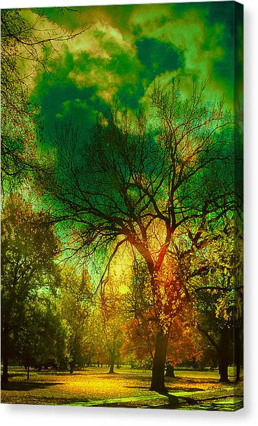 Sun Daggers Canvas Print