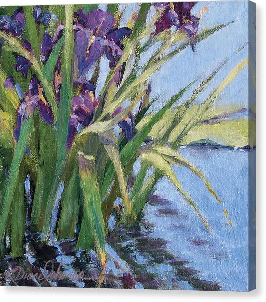 Sun Day - Iris In A Pond Canvas Print by L Diane Johnson
