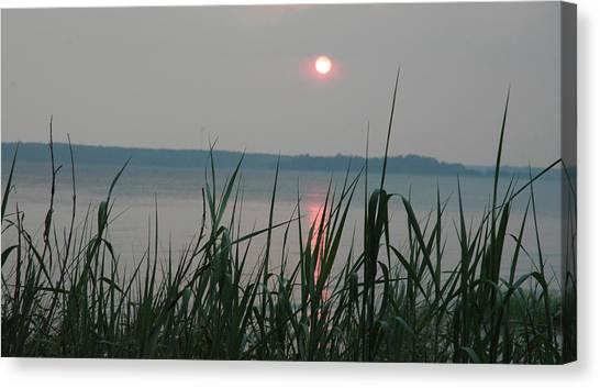 Canvas Print - Sun Drop by Althea Sumpter
