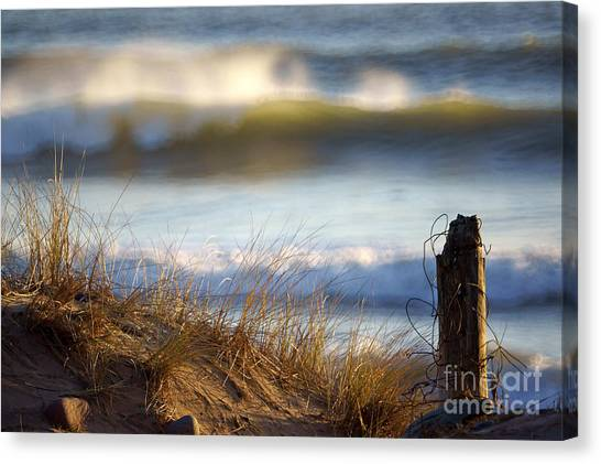 Sun Kissed Waves Canvas Print