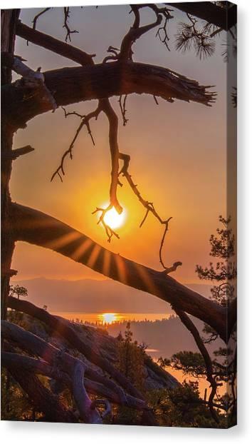 Sun Ornament - Cropped Canvas Print