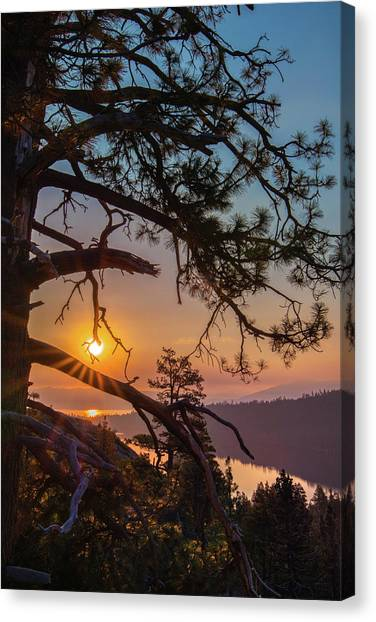 Sun Ornament Canvas Print