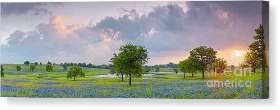 Prairie Sunsets Canvas Print - Sun Rising Over A Bluebonnet Field In Chappel Hill - Washington County Brenham Texas by Silvio Ligutti