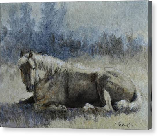 Palomino Horse Canvas Print - Sunbather by Tracie Thompson