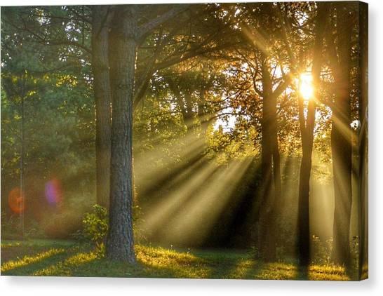 Sunbeams Iv Canvas Print