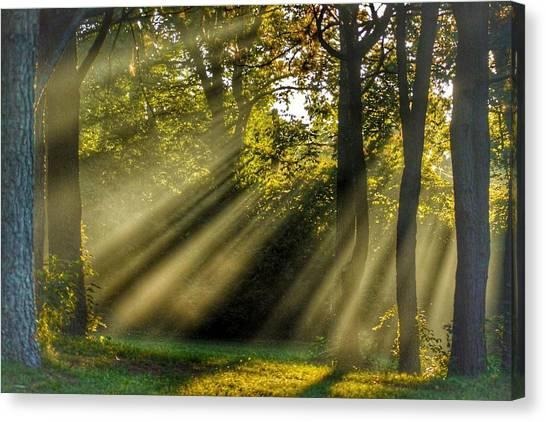 Sunbeams Vii Canvas Print