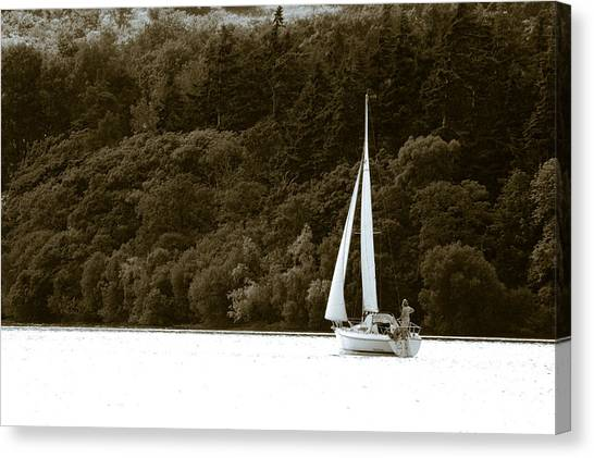 Sunday Sailor Canvas Print by Andy Smy