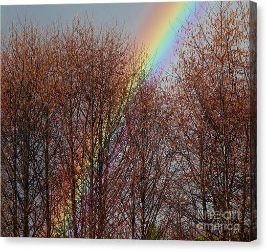 Canvas Print featuring the photograph Sunday's Rainbow by Laura  Wong-Rose